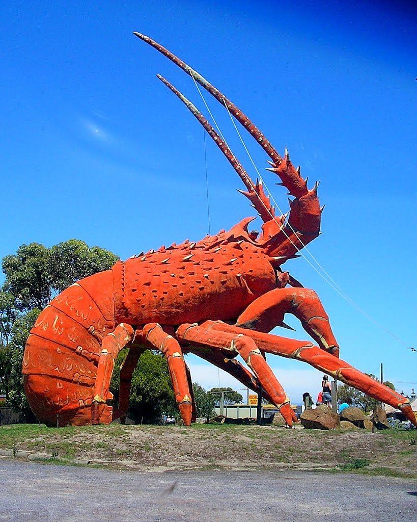 365fd43e43 The Big Lobster, Kingston SE, South Australia | Australia in 2019 ...