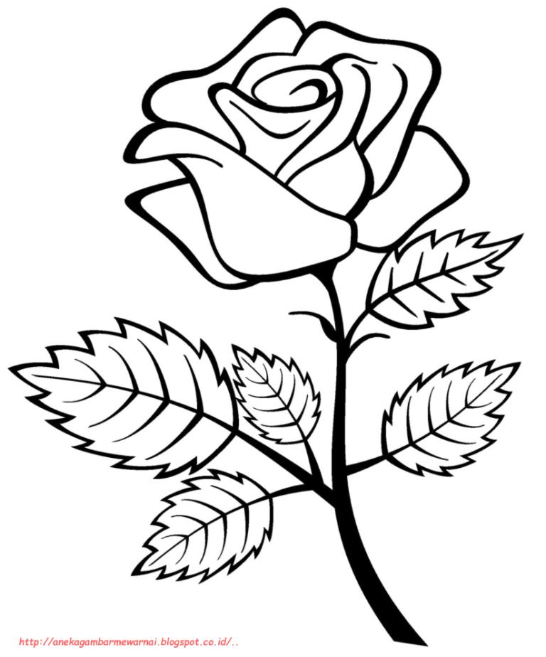 100 Gambar Bunga Simpel Terlihat Keren Rose Coloring Pages Flower Coloring Pages Flower Sketch Images