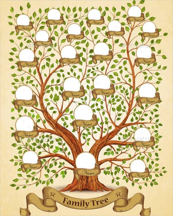BestVectorFamilyTreeTemplates  Blank Family Trees Picture
