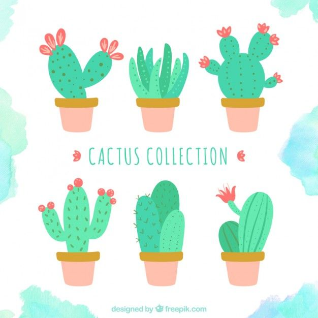 Download Cute Cactus Collection For Free Cactus Images Cactus