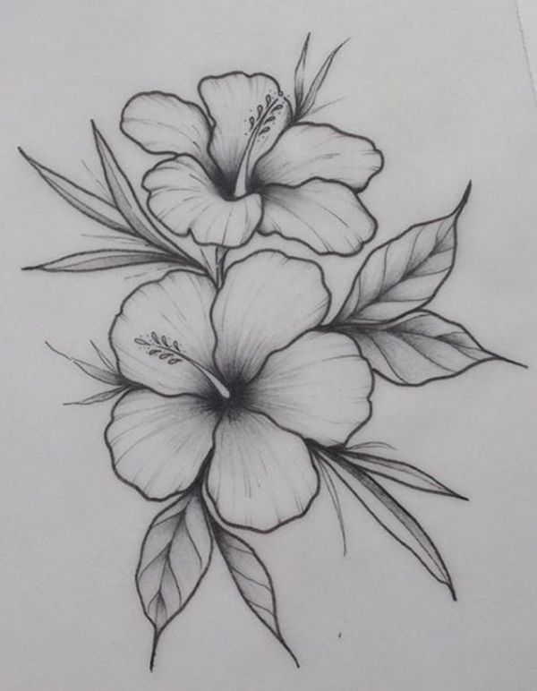 42 Simple And Easy Flower Drawings For Beginners Cartoon District Pencil Drawings Of Flowers Easy Flower Drawings Art Drawings Simple