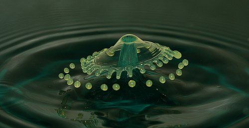 Pin By Corinne Colvin On Water Drops Pinterest Water Drops - Amazing images captured tinniest water droplets