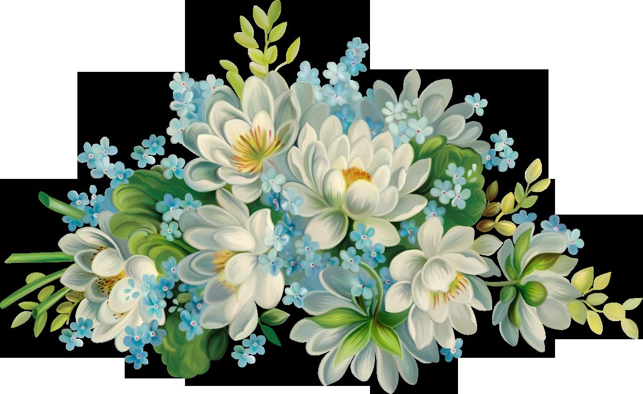 Цветы картинки рисунки на прозрачном, поводу смерти