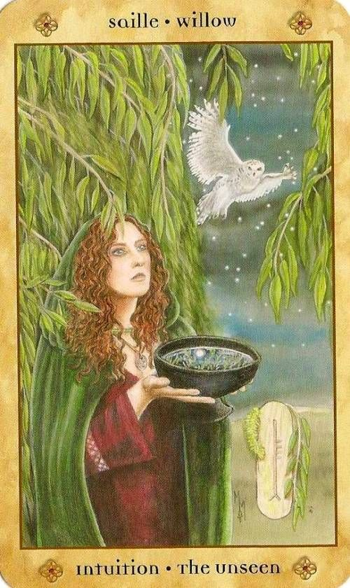 Saille / Willow - Voice Of The Trees Oracle