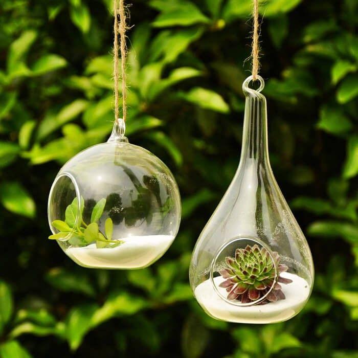 Diese interessanten Glas Globen mit Pflanzen in ihnen stellen eine interessante Aussage, während die Einführung von Leben und Farbe zu Ihrem Space. Hängen Sie diese in Ihre stilvolle Pavillon für eine moderne und elegante Möglichkeit, Pflanzen in den Raum zu bringen.