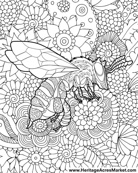 Bee Theme Adult Complicated Coloring Page Pdf Digital Download Color