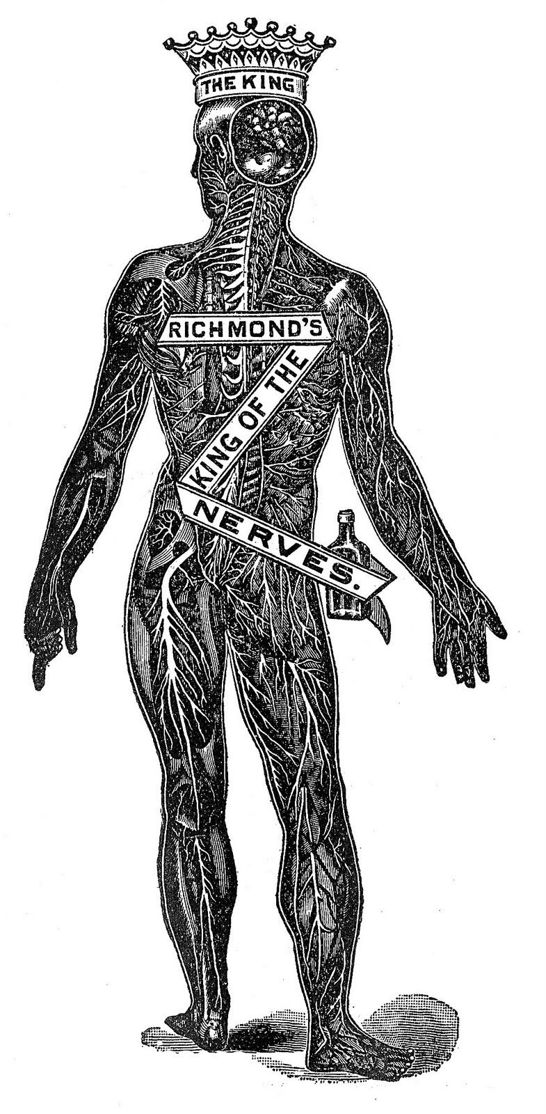 Strange Medical Advertising Image King Of The Nerves From The Late