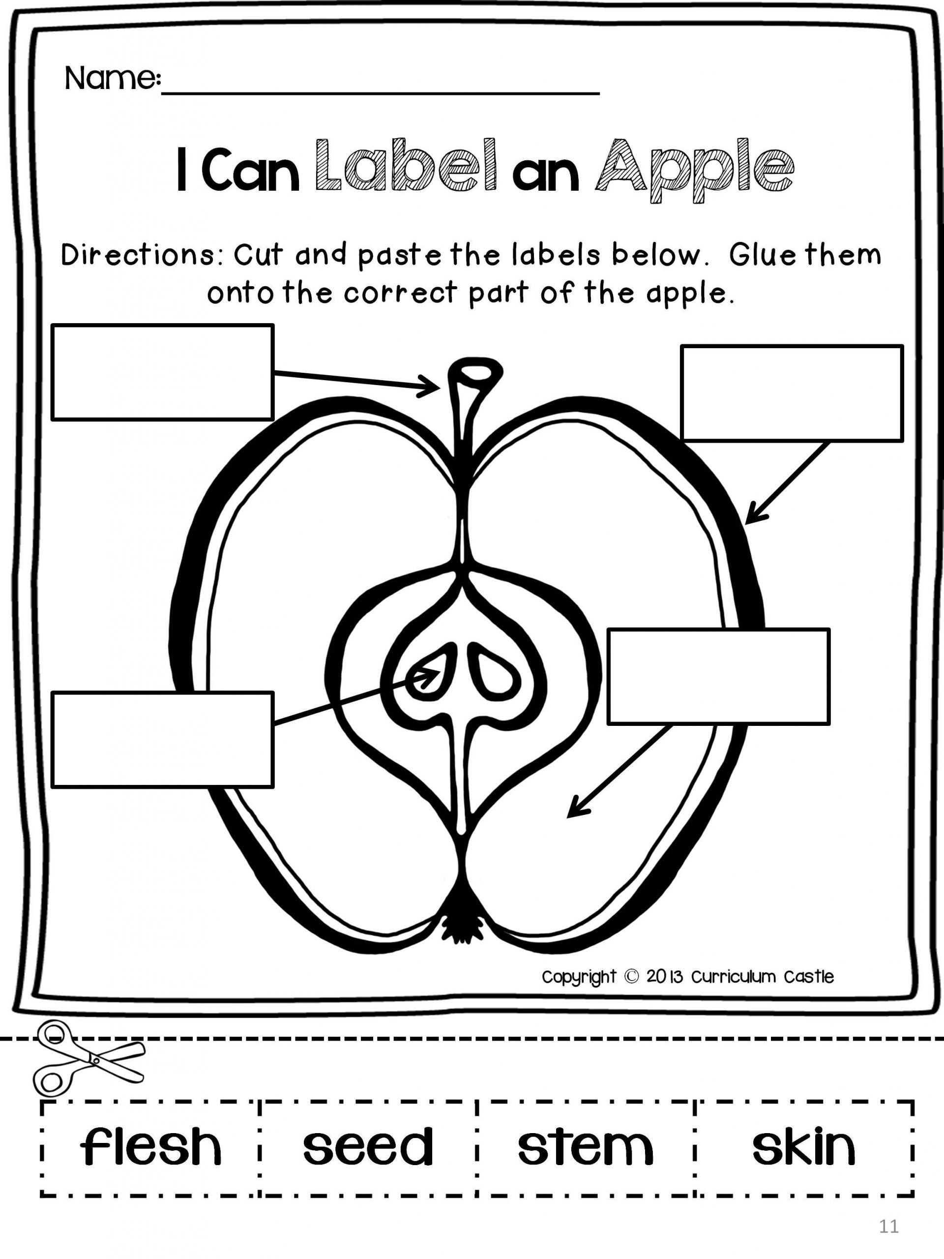 Parts Of An Apple Worksheet Apple Unit And Johnny
