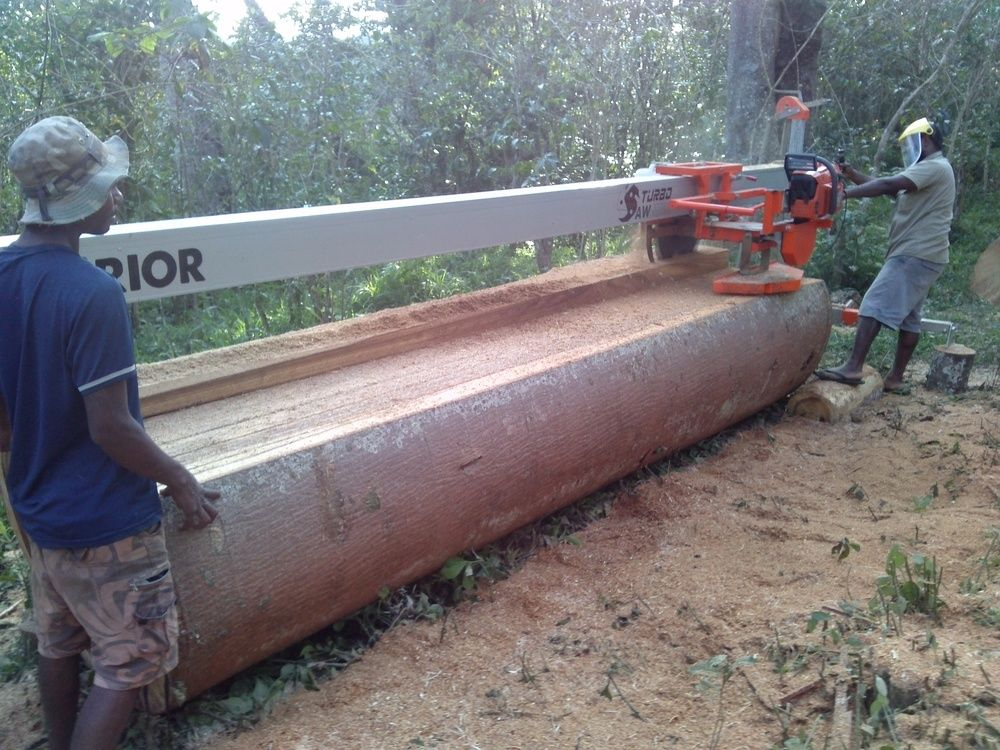 """Warrior"" chainsaw powered overhead rail swing blade saw mill. Cuts dimensioned lumber from logs of any diameter."