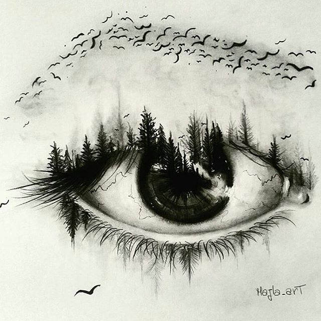 Beautiful Nature Pencil Drawings: Super Creative Eye Drawing By @majla_art …