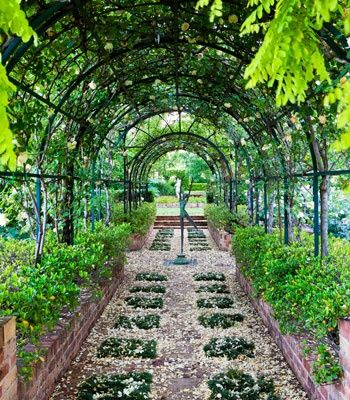 Vine covered archway. Planted path.