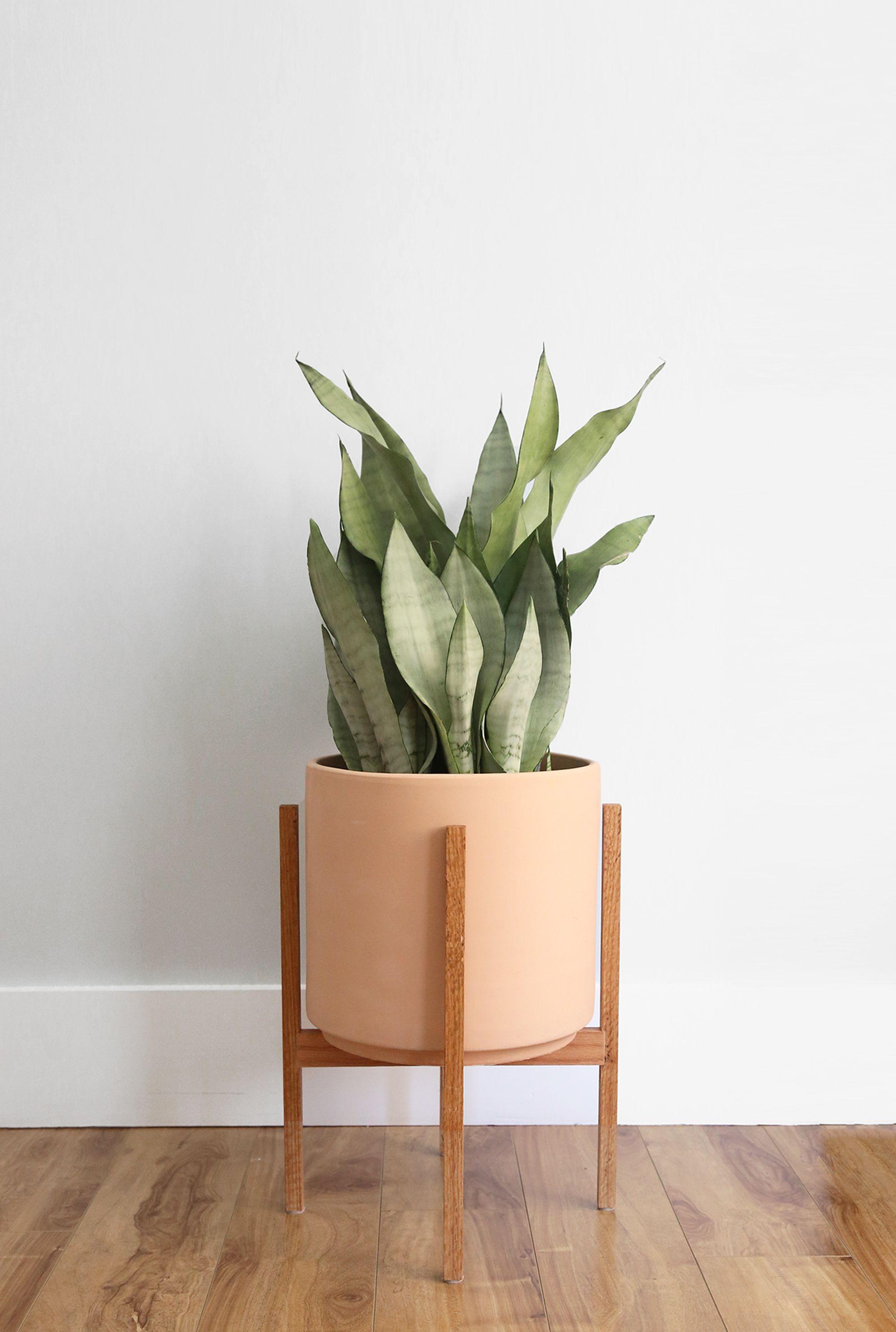 Large Unglazed Mid Century Modern Plant Pot Plant Stand