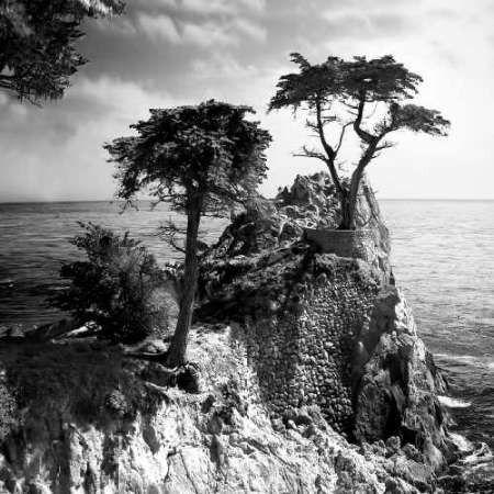 Ocean Cliff Square I