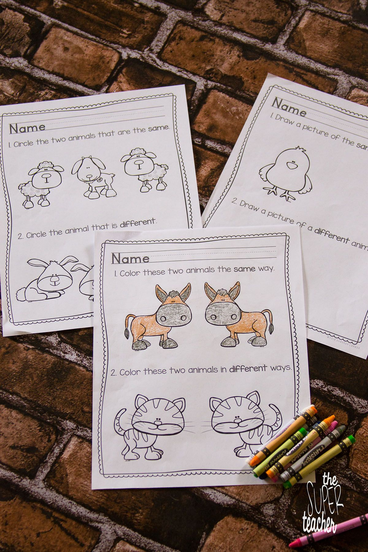 Same And Different Printables And Activities Animal Theme