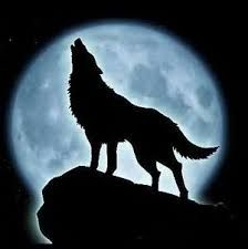 Wolves are legendary because of their howl, which they use to communicate. so if you use your phone very often,you like wolves