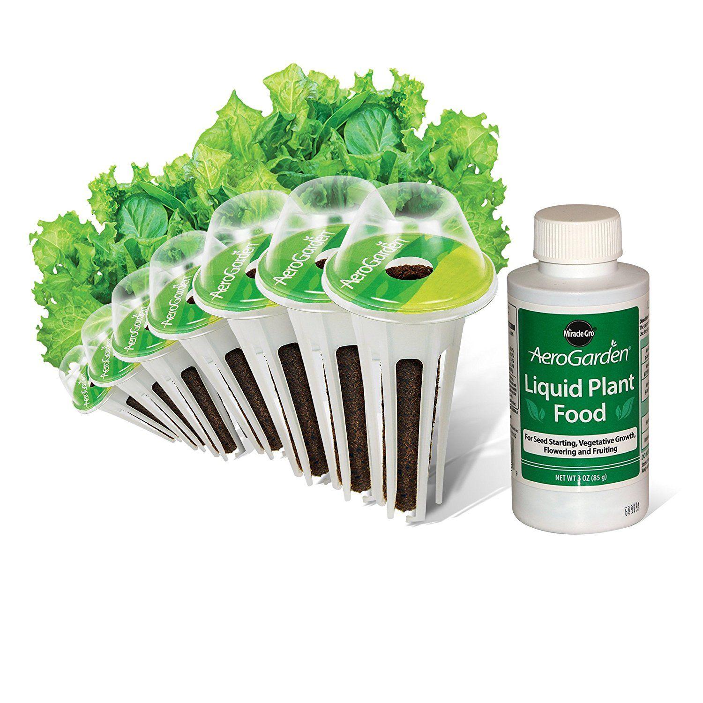 Lettuce Planting Instructions Gardening Pinterest Lettuce