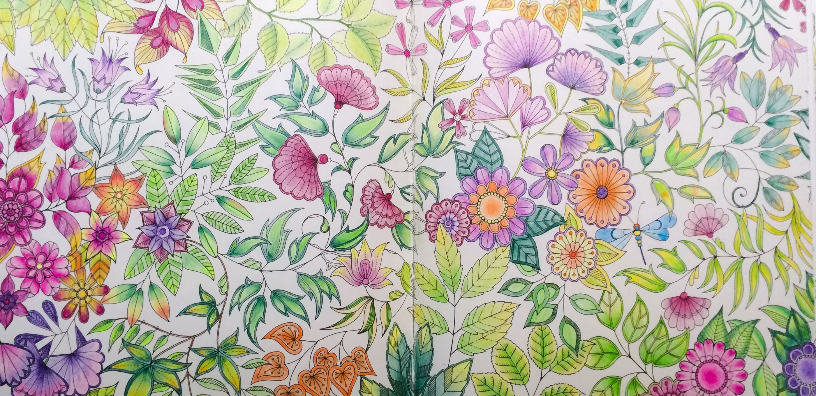 Pin by Shanna Nye on My Secret Garden   Pinterest   Coloring books