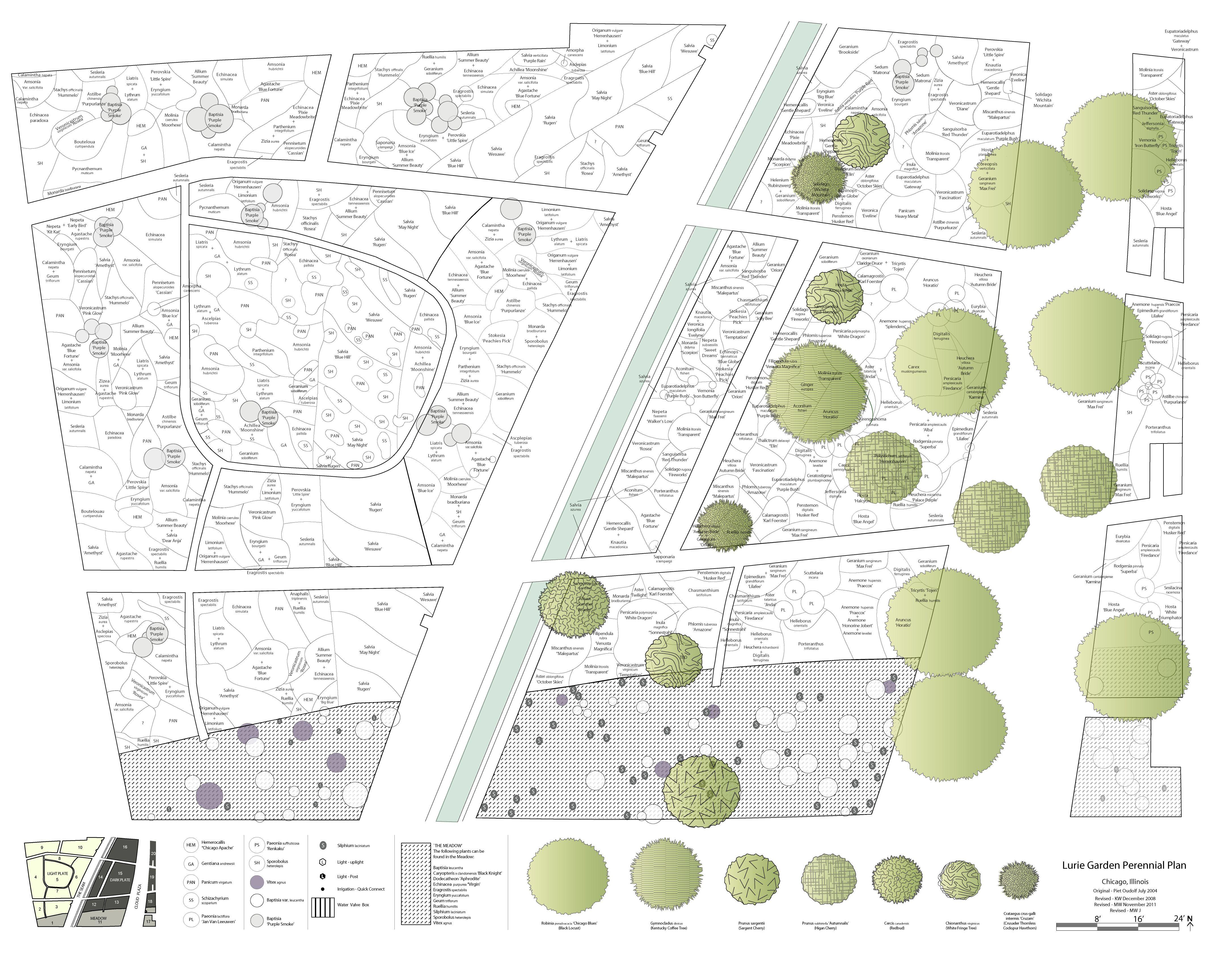 perennial plans lurie garden planting plan millennium
