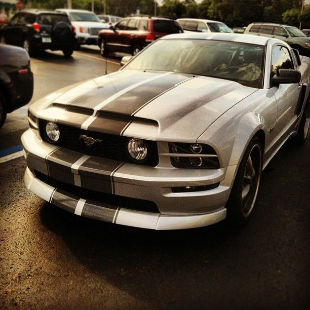 One Day This WILL Be Mine!! Ford Mustang!