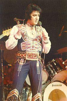 Raised on Elvis! Elvis! Elvis! pictures - by Sandi Pichon