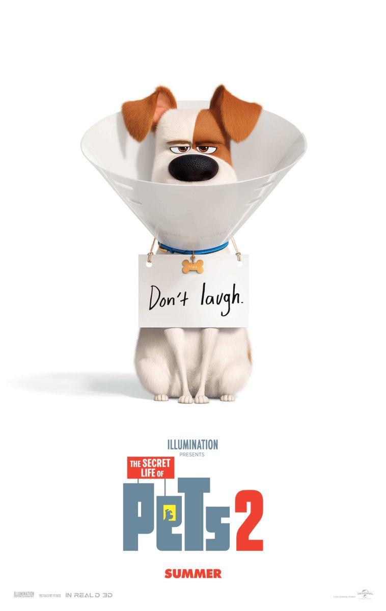 Quick Movie Review Secret Life Of Pets 2 Secret Life Of Pets Secret Life Pets