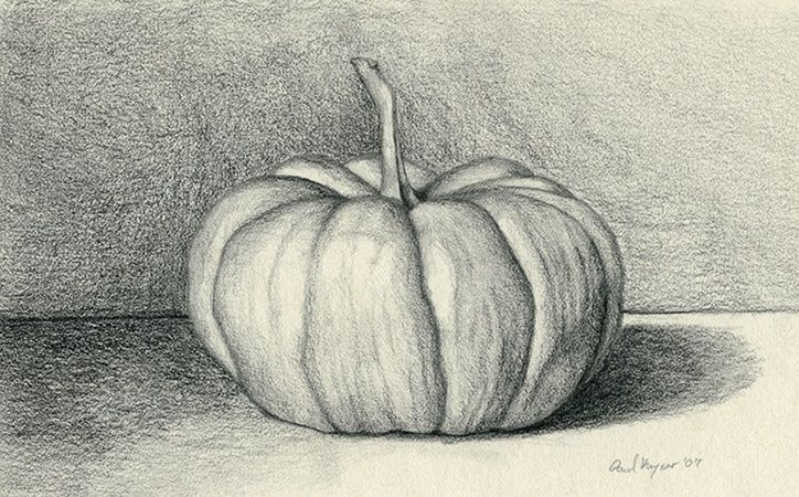 Fall Still Life Pencil Drawing