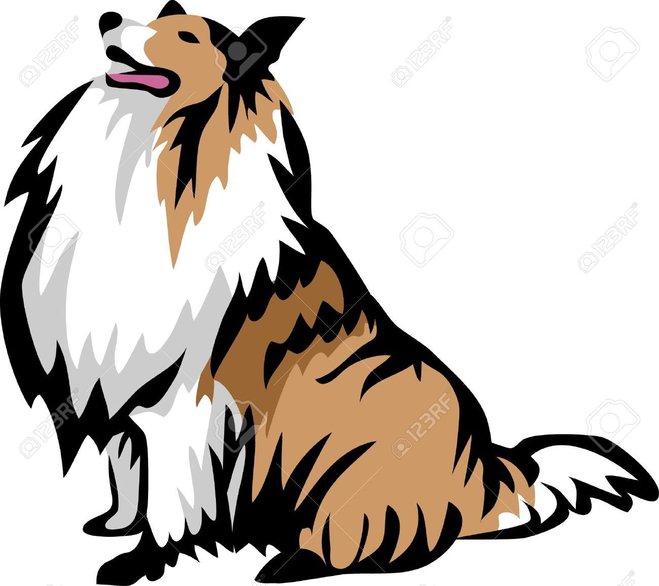 Rough Collie Sitting Collie Dog Rough Collie Collie Dog Puppy Art