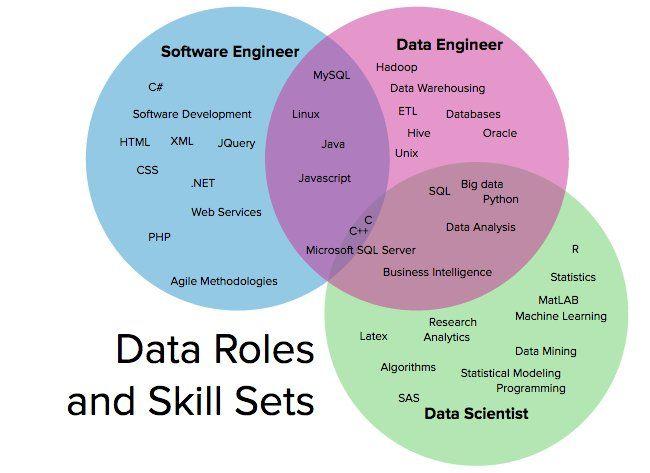 Data Scientists Data Engineers And Software Engineers Informatika Uchebnye Idei Programmirovanie
