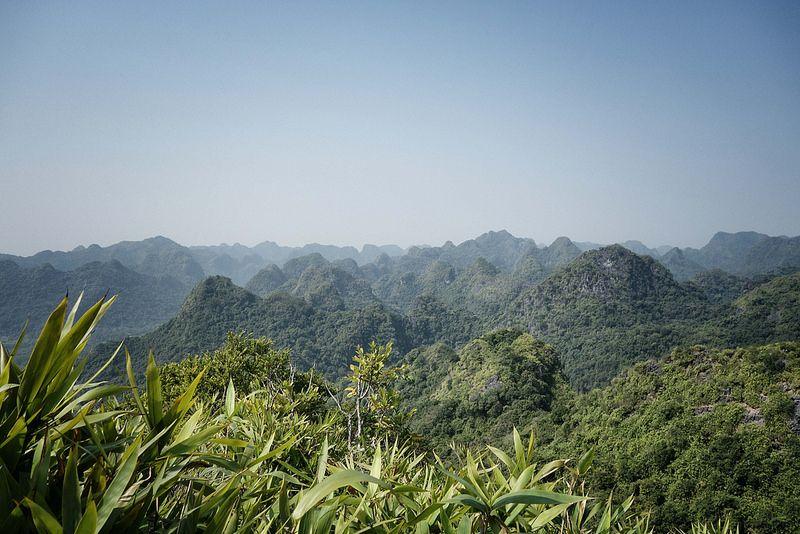 Cat Ba National Park - Ngu Lam Peak  1 - LesGros Sacs