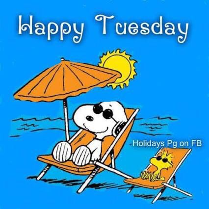 Snoopy Happy Tuesday Pictures Photos And Images For