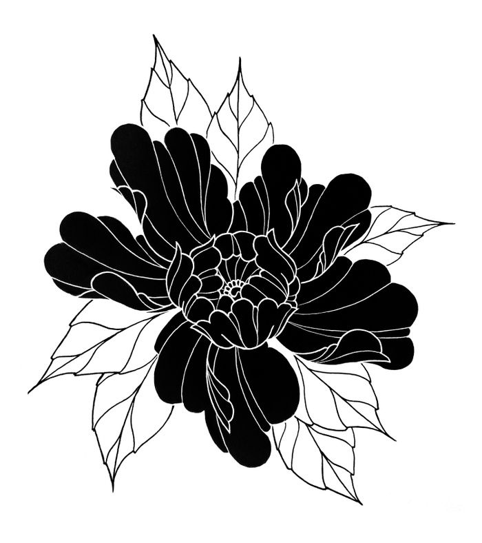 Black Peony Flower At Society6 Com Drawing Peony Flower Linework Blackwork Tattoo Illustration Japanese Flower Tattoo Flower Tattoos Flower Prints Art