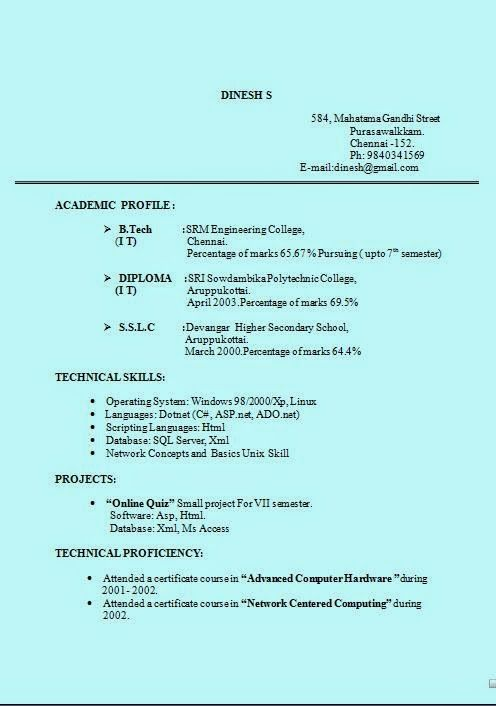 help making a resume Sample Template Example of Excellent Curriculum