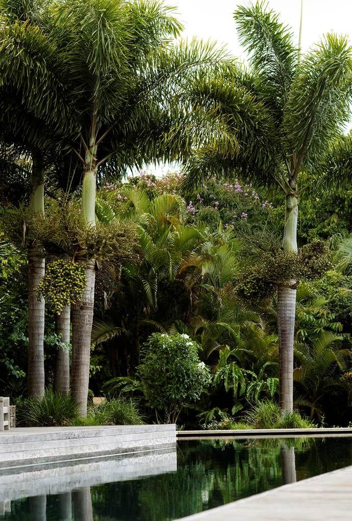 Belle Australian landscape designers book - on sale now ...