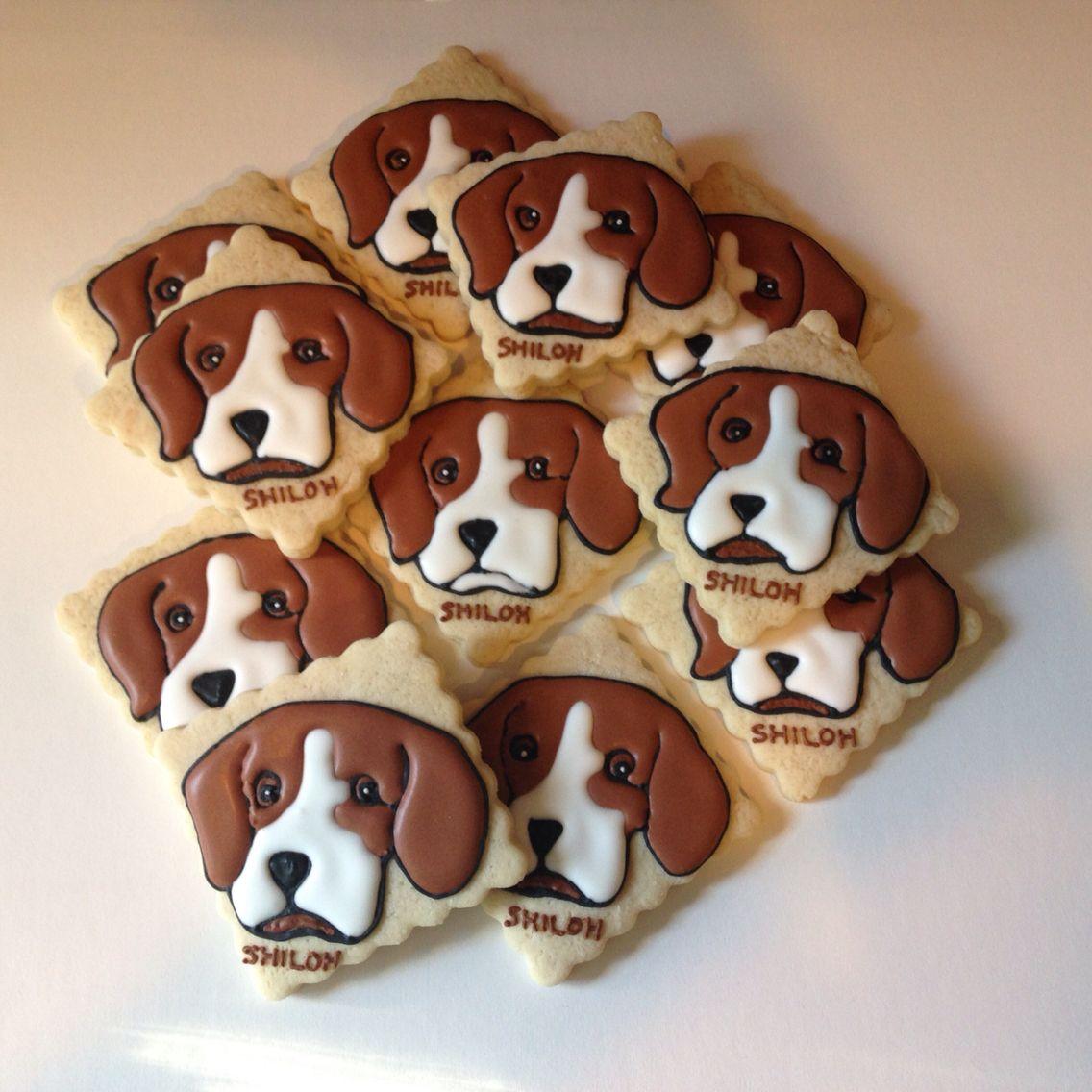 Shiloh Beagle Cookies For 4th Grade Book Club Book Shiloh Beagle