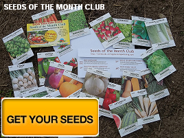 Vegetable Seeds for Life!