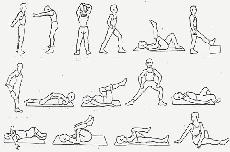 Rekoefeningen En Strek Oefeningen Rekoefeningen Oefeningen