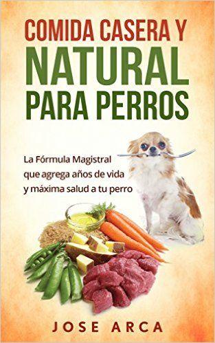 Comida Casera Y Natural Para Perros Una Opcion Sana Nutritiva Y