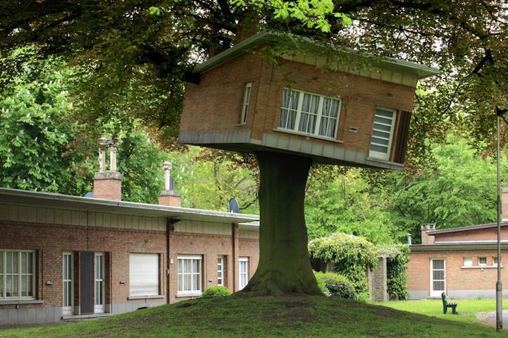 House Stuck in Tree Outside Senior Citizens' Clubhouse - My Modern Metropolis
