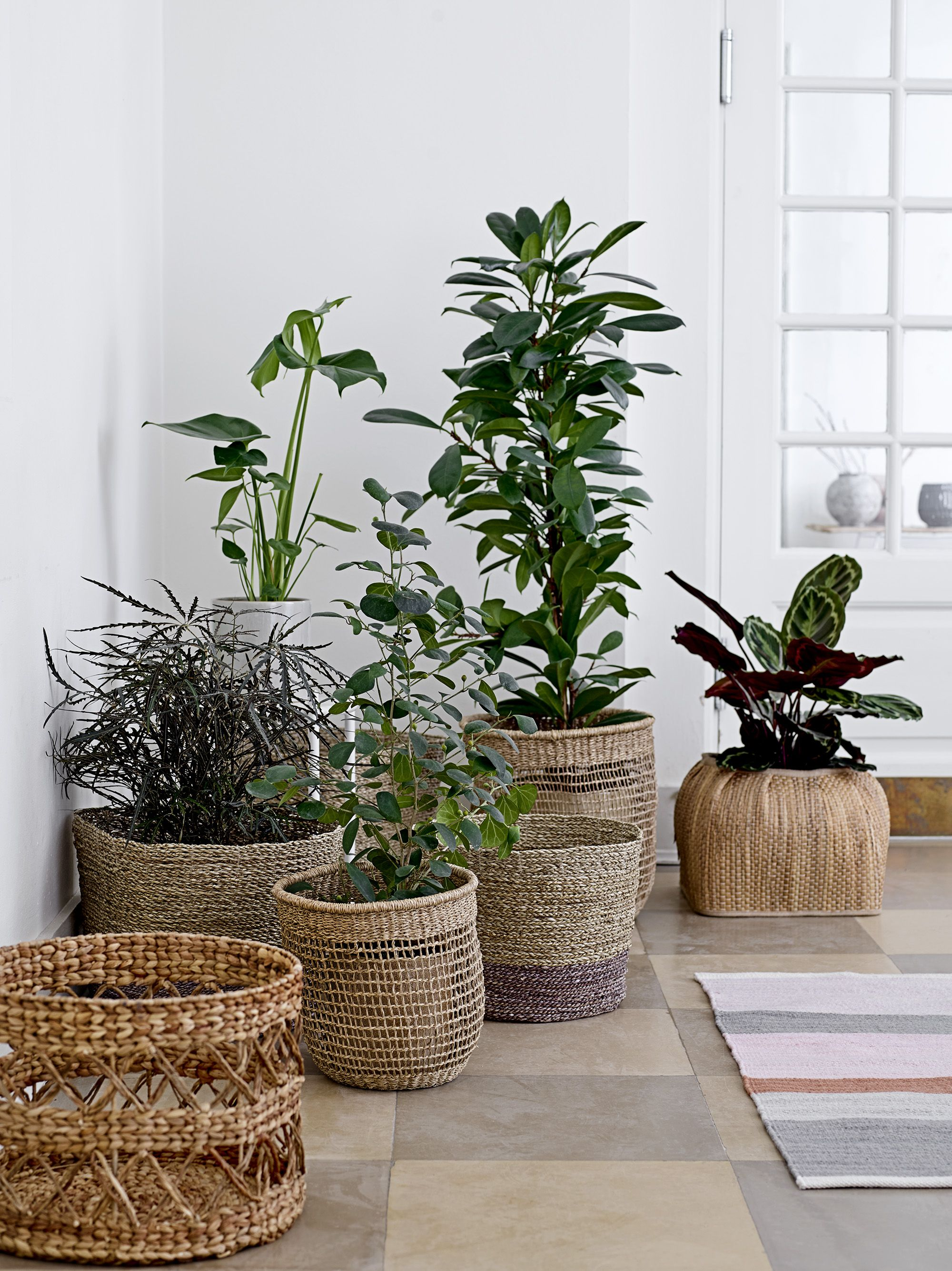 Baskets Are Perfectly Used For Plants Indoor 3 Design By Bloomingville Plant Decor Flower Pots Indoor Plants