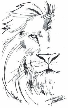 Half face lion and half girl with curls! [M.I.A Aslan by KidNotorious on deviantART] – pinterest blog