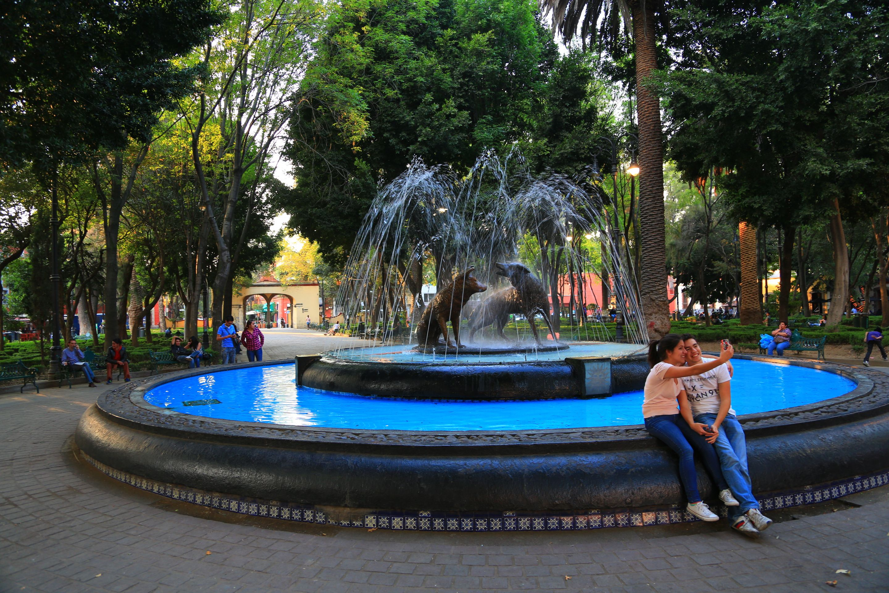 Week 07 Plaza Hidalgo In Mexico City Shows The Positive Affects