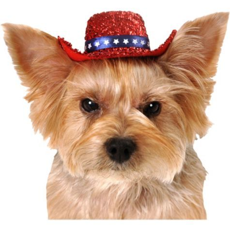 Red Sequin Dog Cowboy Hat - Party City  a47b4015839
