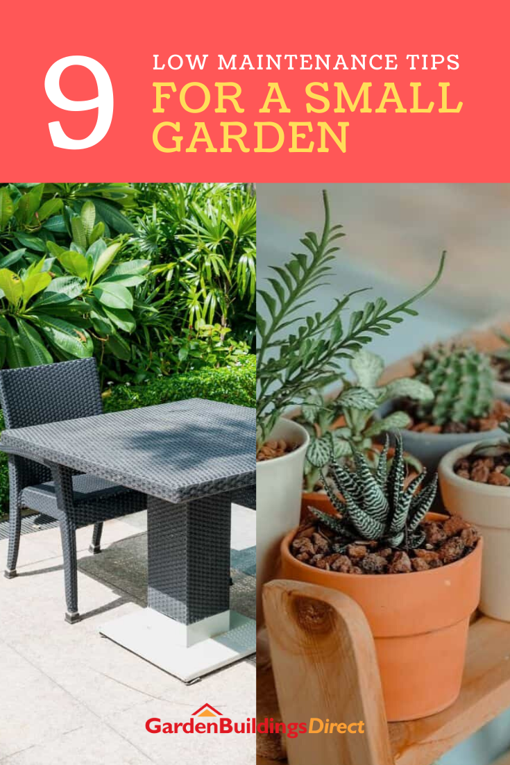Homeowners can sometimes get discouraged to grow a small space — especially if they have little time to tend to it. To help your small garden bloom under low maintenance, here are some of the best plants you can grow and the most practical ideas you can apply! #smallgardenideas #smallgardenideaslowmaintenance #smallgardenideaslowmaintenancepatio #smallgardenideaslowmaintenancedecks #smallgardenideaslowmaintenancefence #lowmaintenanceplants #lowmaintenanceplantsoutdoor #lowmaintenanceplants