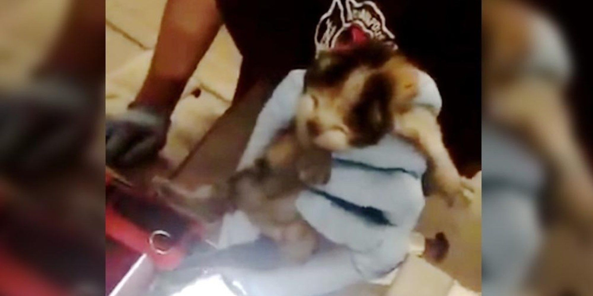 Firefighters Hear Meows From Fire Truck And Find Three Tiny