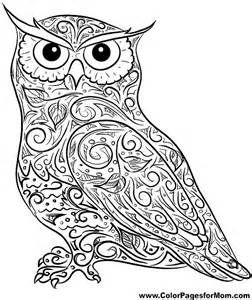 Small Coloring Pages Adult owl - - Yahoo Image Search Results ...