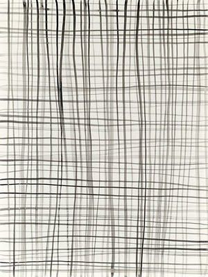 Lines on a paper