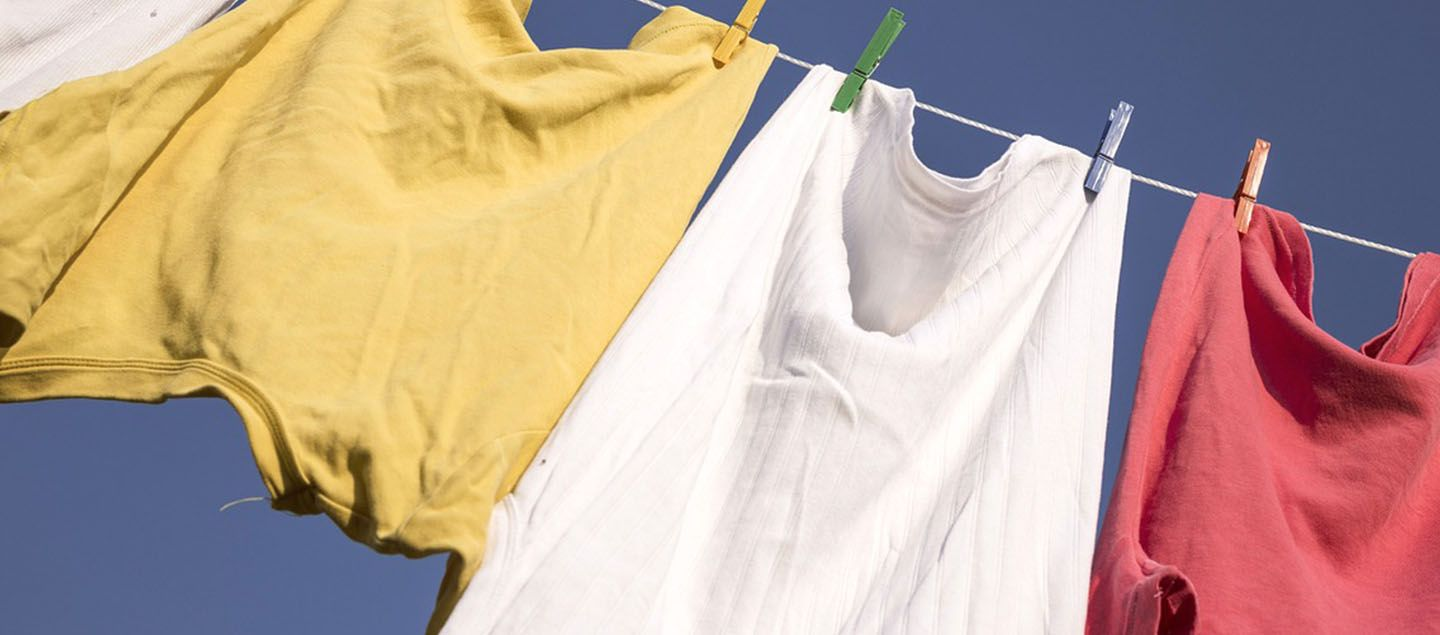 Mould Can Easily Appear On Clothing Due To Wet Storage Or