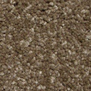 Best In Show Iii Latte Trackless Carpet Okc First Step Flooring Carpet Best Shows