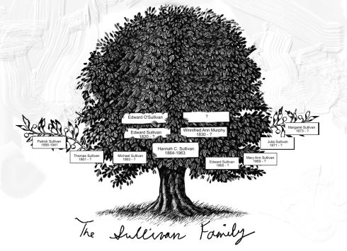 Sullivan Family Tree Find Out Where Your Ancestors Came From