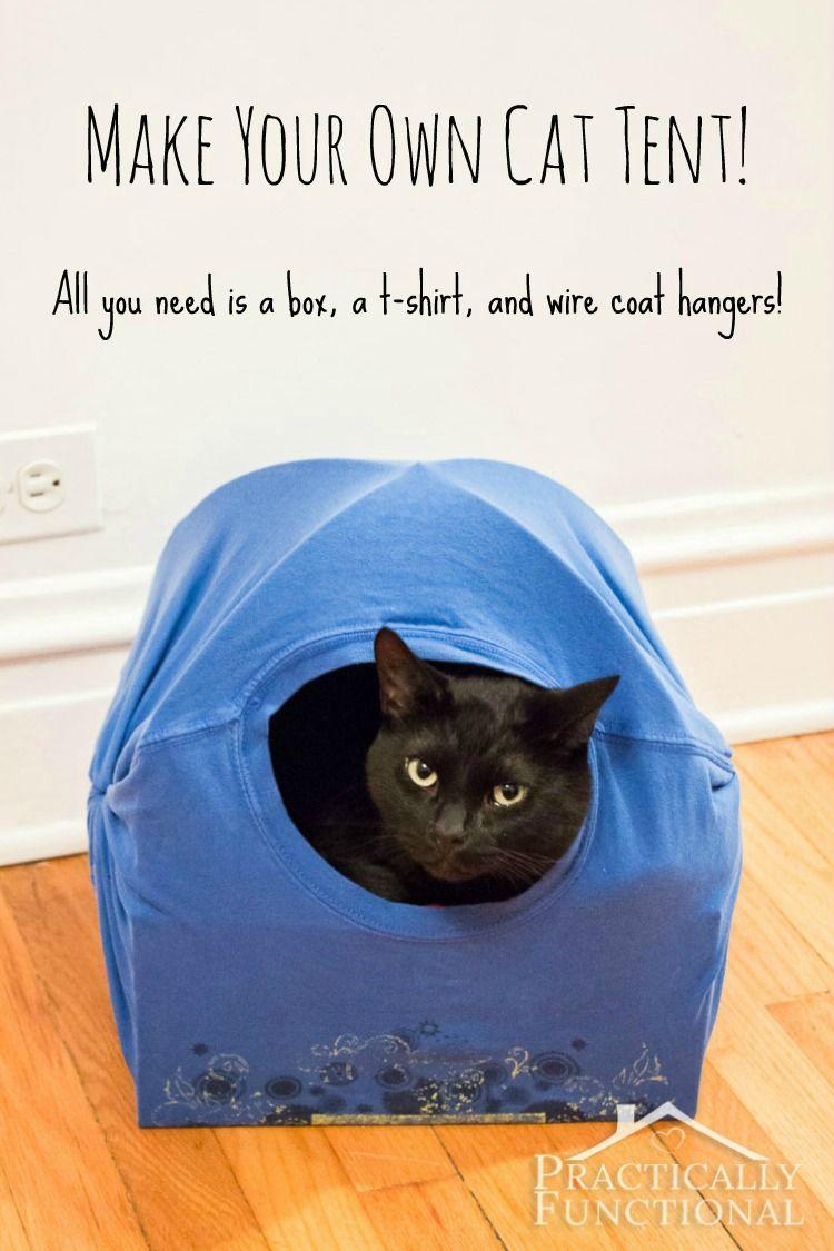 DIY Cat Tent Bed | Kočičárny | Pinterest | Diy cat tent, Wire coat ...